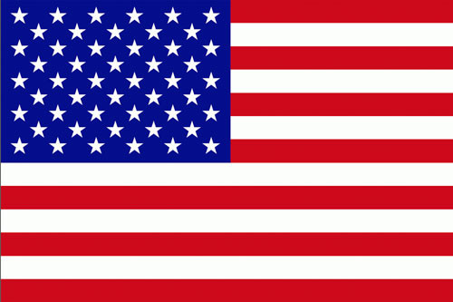 United States 50 Star Flag Icon